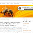 http://mtomas.com/628/accessible-wordpress-theme-tiny-framework-goes-live#__sid=md5