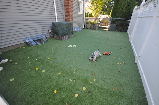Dog Run built with Synthetic Turf in Commack NY