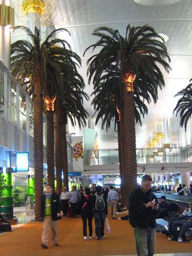 Dubai International Airport 4