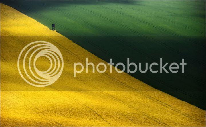 photo Vlad-Sokolovsky-3_zps0e7bd3f6.jpg