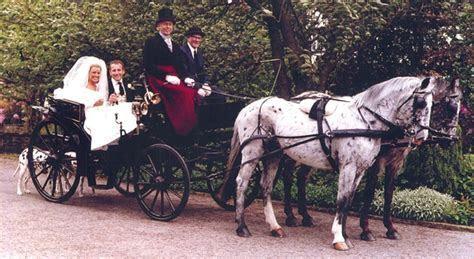 Dalmatian Carriages   Weddings