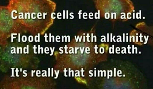 Cancer cells thrive in acidity. Restore the Body's pH levels with Just One Superfood - Living Traditionally