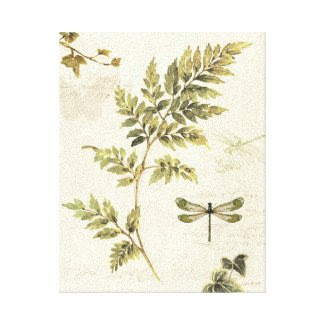 Decorative Ferns and a Dragonfly Canvas Print