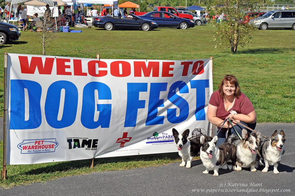 Dogfest Weekend Fun