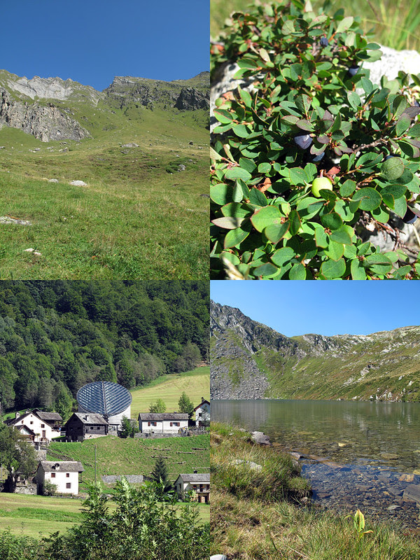 Collage Val Lavizzara 1