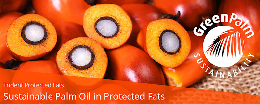 Trident Protected Fats – Sustainable Palm Oil in Protected Fats