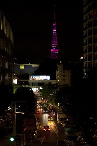 Pink Ribbon Campaign