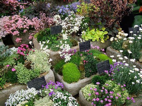 blue flower photo: flower decorations   flower garden