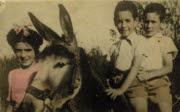 foto en burro
