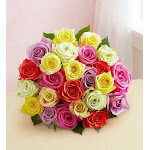 1-800-Flowers Two Dozen Assorted Roses Bouquet Only