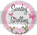 Sunday Strolling Blog Hop
