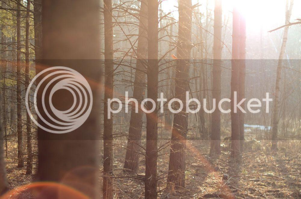 photo 027-3.jpg