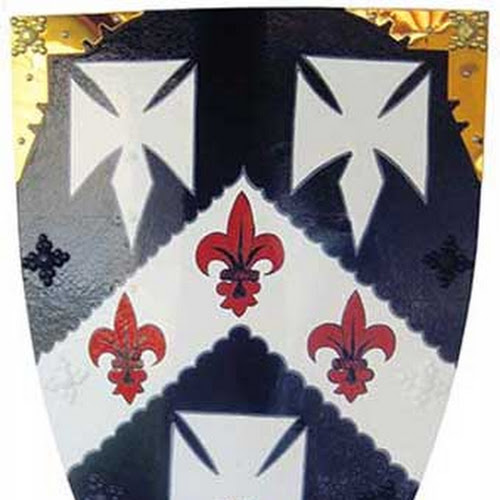 Irish Coat of Arms Shield: Crusader Battle Style