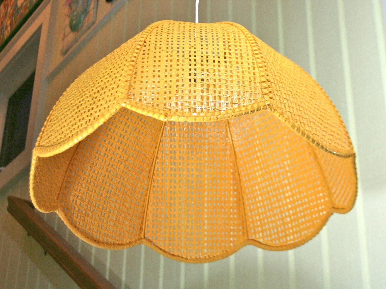 Plastic Wicker Lamp Shades Native Home Garden Design