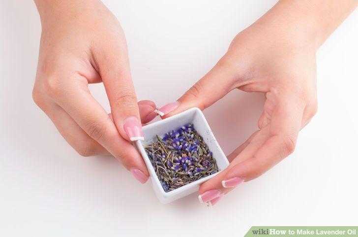 Make Lavender Oil Step 3 Version 3.jpg