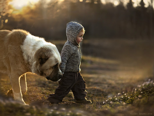 Interesting Photo of the Day: A Boy and His Big Best Friend