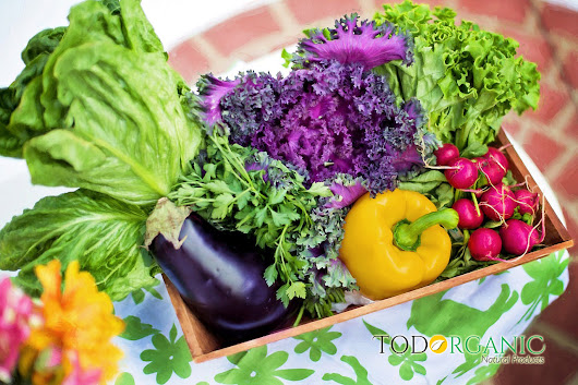 Do you know what Nutrition Rainbow is? - Todorganic
