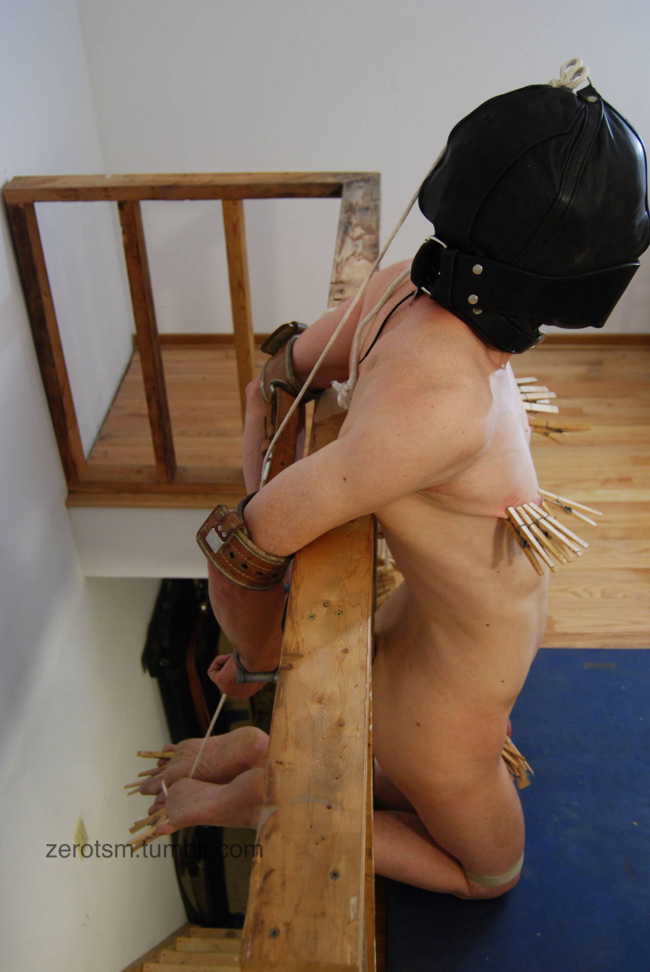Hooded, bound and gagged with clothes pins in places where they count.
