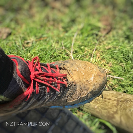 Trail running - Puhoi Domain to Moir Hill of Te Araroa Trail