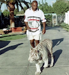 El boxeador Mike Tyson ofrece 10 mil dólares a un zoológico para pelear con un gorila