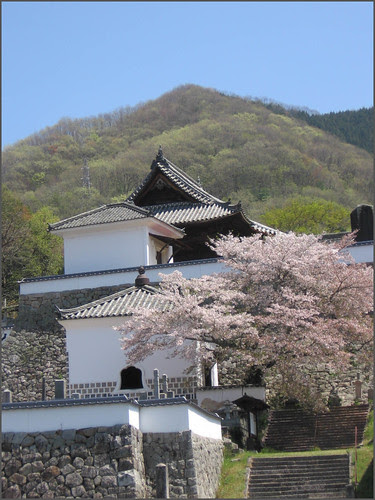 064 blossoms and temple walls