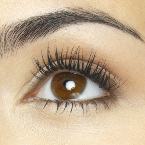 Why Do We Have Eyebrows and Eyelashes? - MeMD