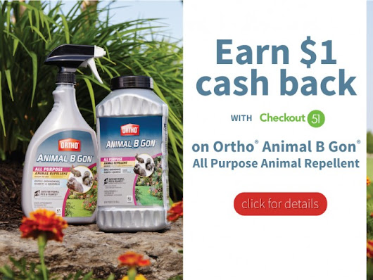 Great Deal on Ortho Animal B Gon!