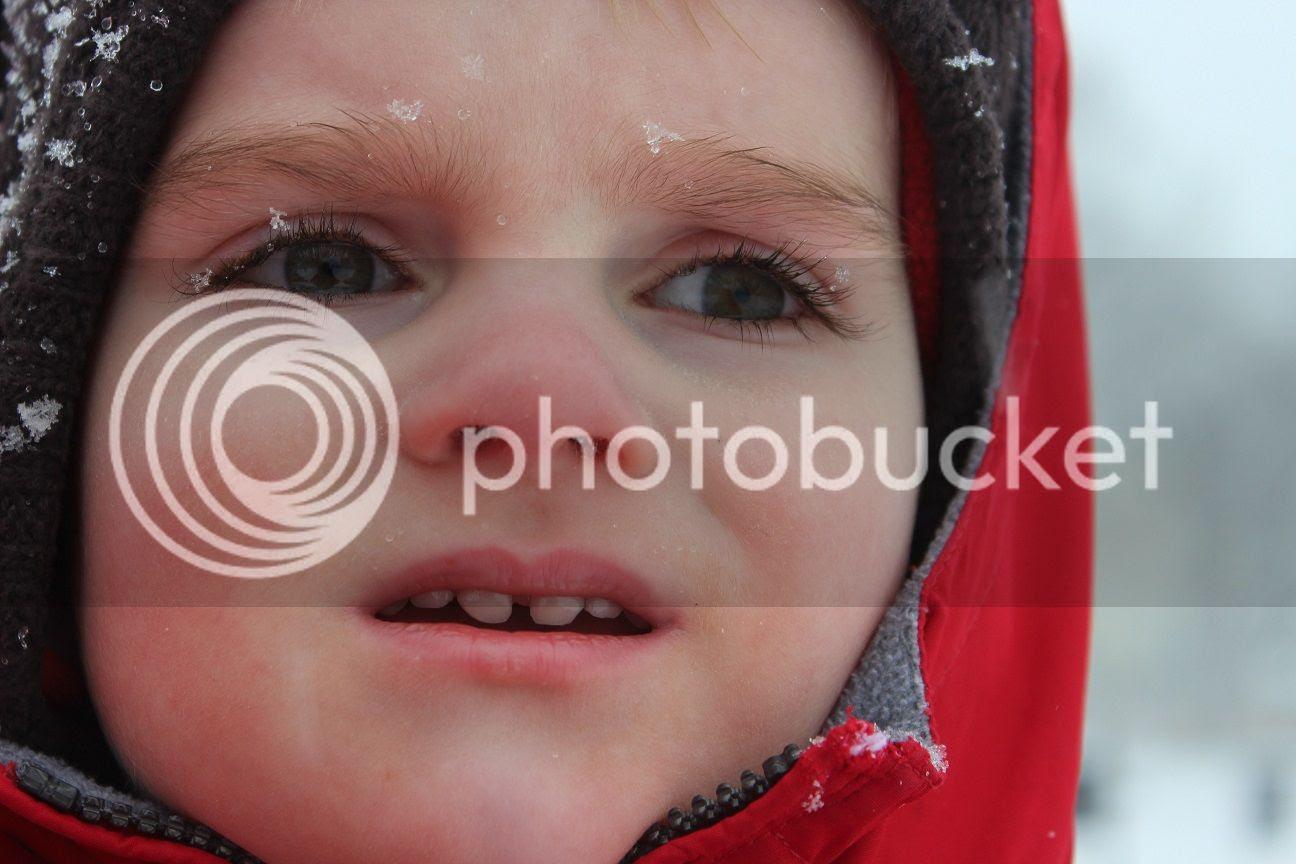 photo snow7_zps184c0a7c.jpg