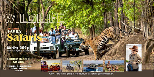 Plan your next family vacation at some Tiger Safari in India