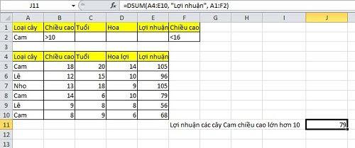 Cách dùng hàm dsum trong excel - Ảnh 3