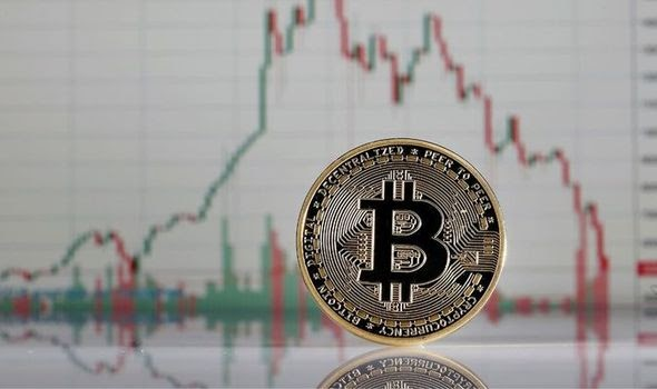 Bitcoin 'made Wall Street panic' as cryptocurrency boom expected to strike $500,000