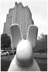 Rabbit 1 BW