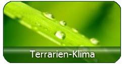 Klimasteuergeräte und Beleuchtung für Terrarien günstig kaufen