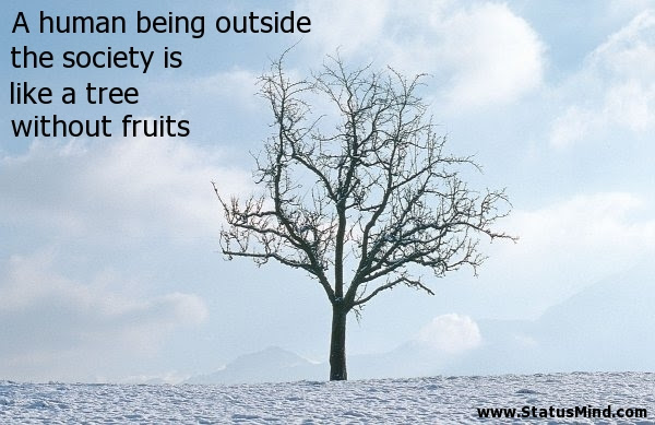 A Human Being Outside The Society Is Like A Tree Statusmindcom