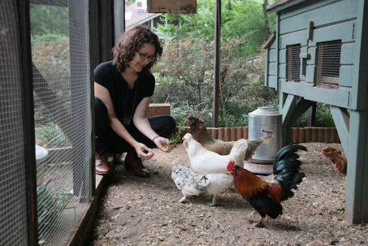 Tour an Animal Lover's Garden