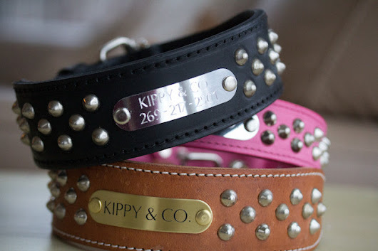 2 inch Leather Dog Collar Studded