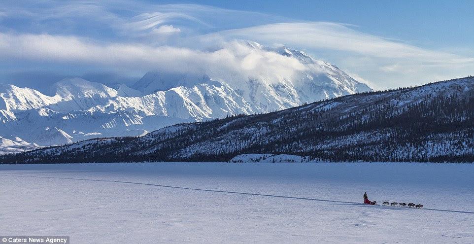 Denali National Park de l'Alaska et préserver offre de superbes vues à la lumière du jour ainsi que le soir