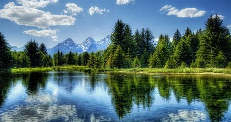 Little forest lake wallpaper   AllWallpaper.in #14026   PC