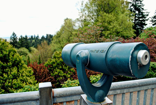 Inside Washington Park - Portland, Oregon