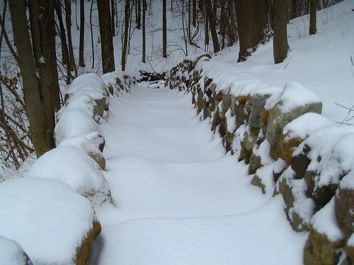 Winter in Proctor Park