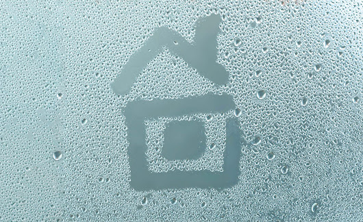 Mold in Your Home Starts and Ends with Moisture Control - yellowblue