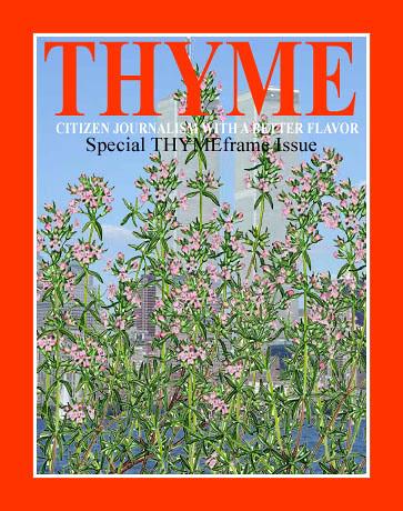 thyme0250