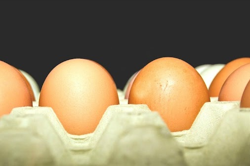 Massive Egg Recall: Are Your Store-bought Eggs on This List? April 15, 2018 Current Events  Featured...