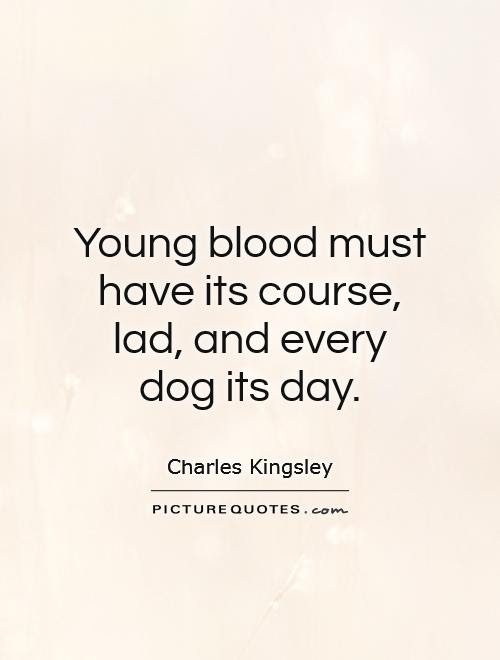 Young Blood Must Have Its Course Lad And Every Dog Its Day