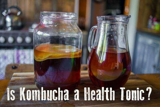 The Many Health Benefits of Kombucha | Wellness Mama
