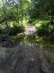 Along The Old North Road: Gregors Creek
