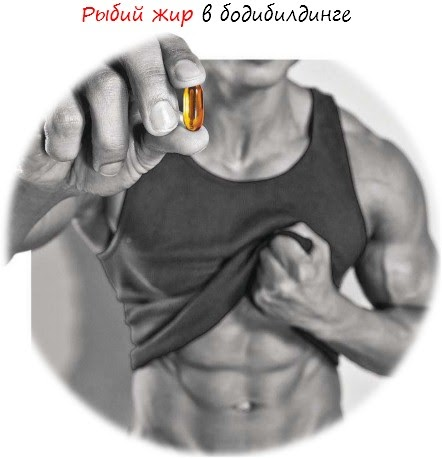 Fish oil in bodybuilding harmful or helpful body for Why do people take fish oil