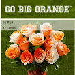 College Football Colored Roses Review and Giveaway