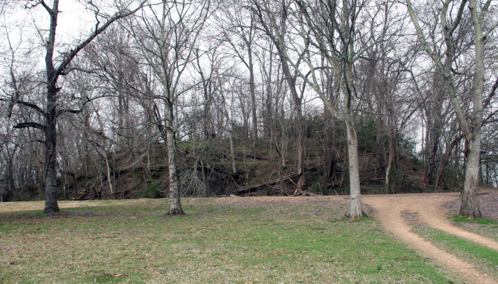Mound A, one of three earthen mounds at Smith Creek. Image Courtesy of Megan Kassabaum and the Penn Museum Blog.