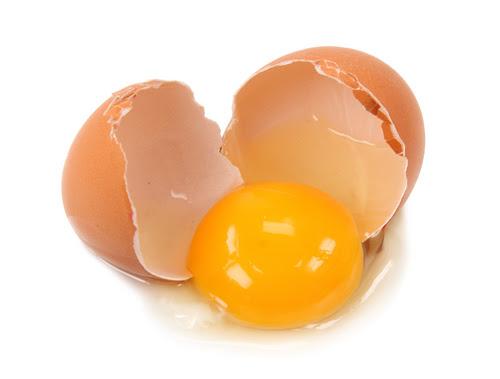 egg02 26001823